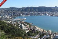 Get the best views of Wellington from the top of Mt. Victoria - all it takes is an energetic walk up the hill or a short scenic drive to the summit.
