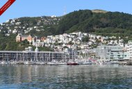 Sunny Mt. Victoria provides a backdrop to some very distinctive Wellington landmarks - St Gerard's church, Victorian timber villas, the marina and the recently developed Clyde Quay wharf apartment building.