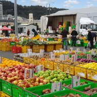 The Sunday Harbourside Market is the oldest and most popular market in Wellington, filling the waterfront with fresh produce and assorted food stalls since 1920.